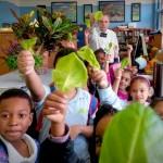 StephenRitz-classroom-lettuce-children1-1024x768